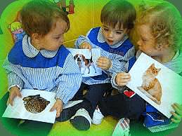 niños identificando animales